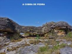COBRA DE PEDRA